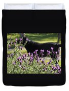Lavender And Black Lab Duvet Cover