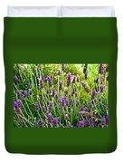 Lavender At Pilgrim Place In Claremont-california Duvet Cover
