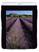 Lavender Field Provence France Duvet Cover