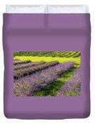 Lavender Fields Forever Duvet Cover by Kendall McKernon
