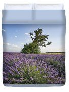 Lavender Provence  Duvet Cover by Juergen Held