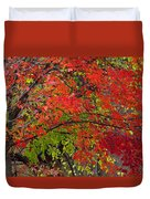 Layers Duvet Cover by Ed Smith