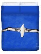 Laysan Albatross Duvet Cover