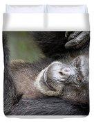 Lazy Chimp - Lowry Park Zoo Duvet Cover