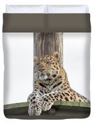 Lazy Leopard Duvet Cover