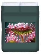 Leaf Of Sundew Duvet Cover by Nuridsany et Perennou and Photo Researchers