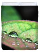 Leaf Veins And Raindrops Duvet Cover