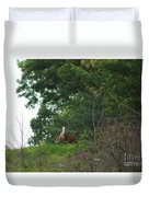 Leaping White-tail  Duvet Cover
