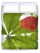 Leaves. Duvet Cover by Itai Minovitz
