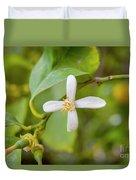 Lemon Blossoms 1 Duvet Cover