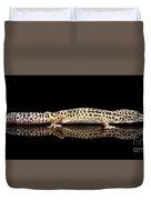 Leopard Gecko Eublepharis Macularius Isolated On Black Background Duvet Cover