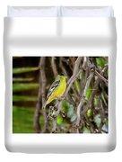 Lesser Goldfinch H57 Duvet Cover