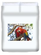 Let Me Get It - Scarlet Macaws Duvet Cover