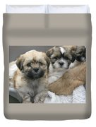 Lhasa Apso Puppy Painting Duvet Cover