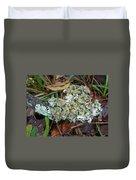 Lichen On Dead Branch Outer Banks North Carolina Usa Duvet Cover