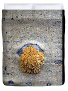 Lichen On The Trees 1 Duvet Cover