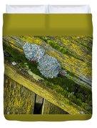 Lichen On Wood. Duvet Cover