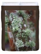 Lichens 4 Duvet Cover