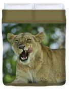 Licking Lion Duvet Cover