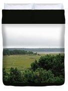 Lieutenant Island Marsh Duvet Cover