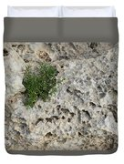 Life On Bare Rock - Pockmarked Limestone And Thyme Duvet Cover