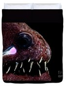 Light Organ Of Threadfin Dragonfish Duvet Cover