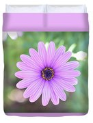 Light Purple Gazania Macro 1  Duvet Cover