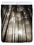 Light Through Forest Duvet Cover