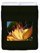 Lilies Orange Glowing Lily Flowers Giclee Prints Baslee Troutman Duvet Cover