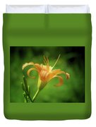 Lily Picture - Daylily Duvet Cover