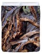 Limber Pine Roots Duvet Cover