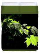 Limelighted Maples Duvet Cover