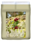 Lingonberries 1 Duvet Cover
