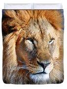Lion 09 Duvet Cover