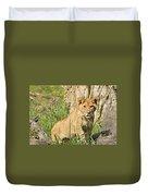 Lion Cub 2 Duvet Cover