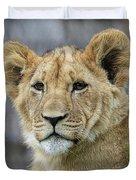 Lion Cub Close Up Duvet Cover