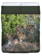 Lion Cubs Awaiting Mom Duvet Cover