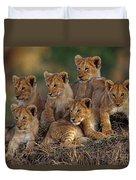 Lion Cubs Duvet Cover