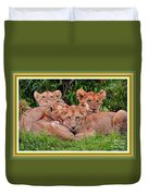 Lion Cubs. L A With Decorative Ornate Printed Frame. Duvet Cover