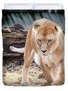 Lion Eyes Duvet Cover