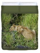 Lion In A Cool Glade Duvet Cover