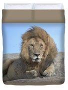 Lion On Mound Duvet Cover