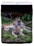 Lion Roar/2 Duvet Cover