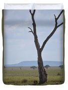Lion Under Tree Duvet Cover