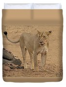 Lioness At The Kill Duvet Cover