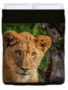 Lioness Cub Duvet Cover