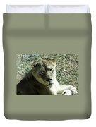 Lioness Peering Duvet Cover