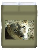 Lioness Up Close Duvet Cover