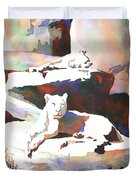 Lionesses At Zoo Duvet Cover