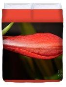 Lipstick Red Amarillis Duvet Cover